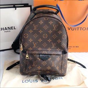 Louis Vuitton Palm Spring monogram mini backpack